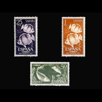 SAHARA. 209/11 PRO INFANCIA